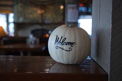White pumpkin greeting welcome background Stock Photos