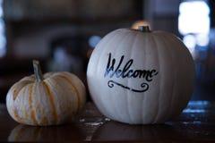 Nice halloween welcoming pumpkins close up Royalty Free Stock Photo