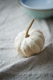White Pumpkin Royalty Free Stock Photography