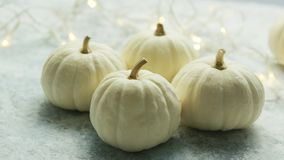 White pumpkins with garland. Arrangement of few white-colored fresh pumpkins on gray surface with glowing garland on background stock footage