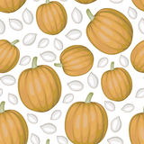 White pumpkins seeds and pumpkins pattern seamless Royalty Free Stock Image