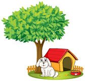A white puppy beside a doghouse under a big tree Stock Images