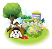 A white puppy inside a doghouse Stock Image