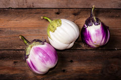 White and purple eggplants Royalty Free Stock Photos