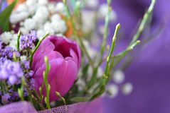 White and Purple Floral Decor Royalty Free Stock Image