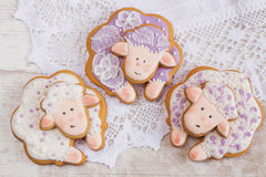 White and purple Sheep gingerbread cookies on  lace background Stock Image