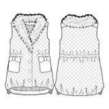 White quilted vest with fur collar. Quilted vest with fur collar royalty free illustration