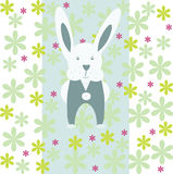 White rabbit. Royalty Free Stock Photography