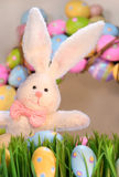 White rabbit with colored eggs stock photography