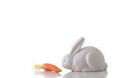 White rabbit eat carrot. Stock Photo