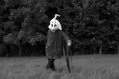 White rabbit hunter Royalty Free Stock Photography