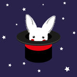 White Rabbit in Magician Hat Royalty Free Stock Images
