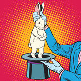 White rabbit in the magicians hands. Pop art retro style. Circus arts. Circus animals Royalty Free Stock Photography