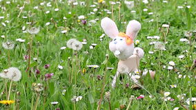 White rabbit marionette. On green grass stock footage