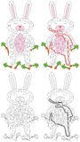 White rabbit maze Stock Images