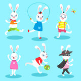 White rabbit 6 poses Royalty Free Stock Images