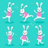 White rabbit 6 poses Stock Images