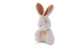 White rabbit toy doll isolated over white. Stuffed soft white rabbit toy doll isolated over white Stock Image