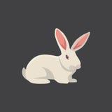 White rabbit vector Royalty Free Stock Photos