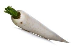 White rabbit on white background Stock Image