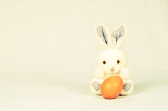 White rabbit on white background Stock Image