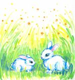 White rabbits. Two white,sweet rabbits sitting on the meadow.Picture I have painted by myself with watercolors Royalty Free Stock Photos