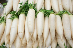 white radish Stock Photo