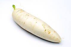 White radish Royalty Free Stock Photos