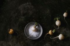 White radish with salt. Whole white fresh organic radish in metal plate with sea salt over dark metal texture background. Top view with copy space. Vegetarian Royalty Free Stock Images