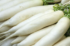 White radishes Stock Photos