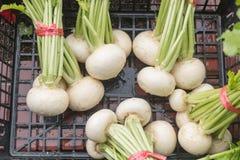 White radishes on black basket. In market Stock Photography