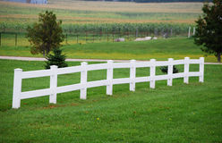 White rail fence Stock Photography