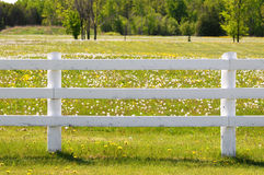 White rail fence. White wooden post and rail fence stock images
