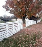 White fence and autumn trees Stock Photography