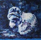 White ram Royalty Free Stock Image