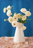 White Ranunculus flower Stock Photo
