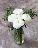 White ranunculus flowers in vase Grey background Stock Photos