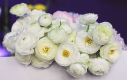 White ranunculus and  peony bouquet flowers. Soft focus image , gently colors Royalty Free Stock Photos