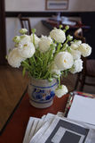 White ranunculus in vase on the table Royalty Free Stock Photography