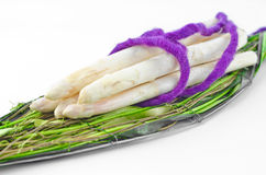 White raw asparagus Royalty Free Stock Images
