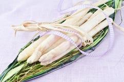 White raw asparagus Royalty Free Stock Photo