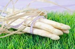 White raw asparagus Stock Image