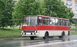 White and red bus Stock Photos