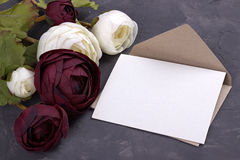 White and red buttercup flowers ranunculus envelope on plaster gray background. Copy space. Royalty Free Stock Photography