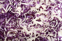 White and Red  Cabbage. Stock Image