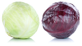 White and red cabbage vegetable isolated Stock Photography