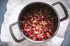 White and red currant berries in a pot royalty free stock photo