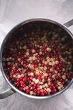 White and red currant berries in a pot royalty free stock image