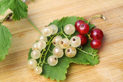 White and red currant. With leaves on wooden ground Stock Photos