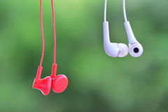 White Red earphone green backgrond Stock Photography